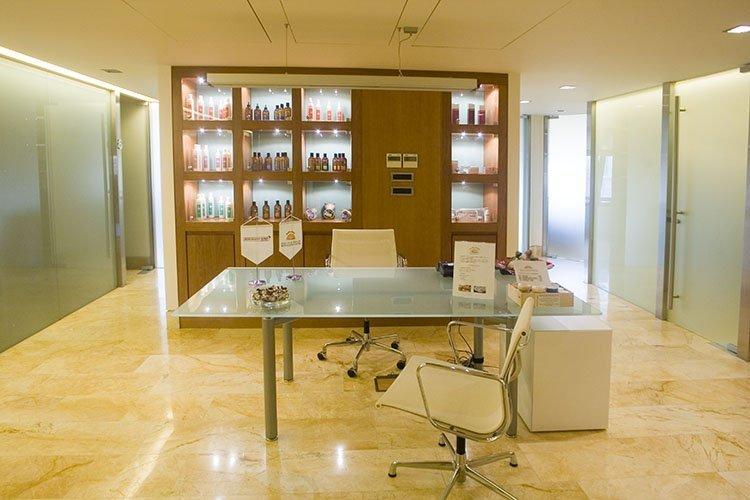 Σαλόνι Υποδοχής - Θεραπείες Τριχόπτωσης 4ος όροφος - Bergmann Kord