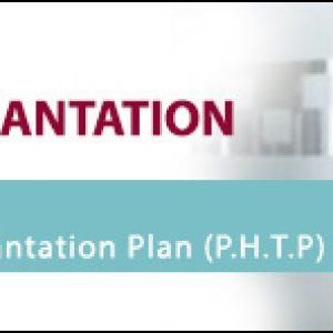Personalized Hair Transplantation Plan (P.H.T.P.) Banner